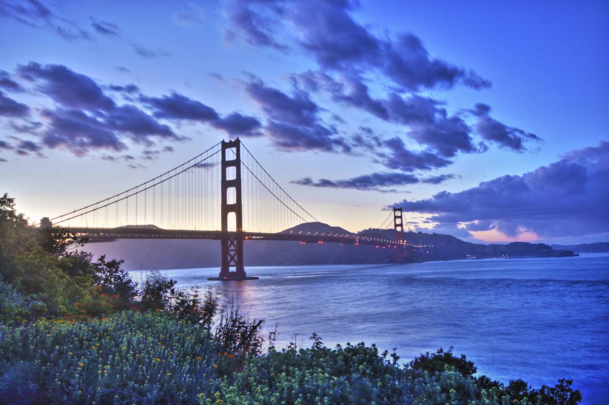 Image Link to GG Bridge Gallery